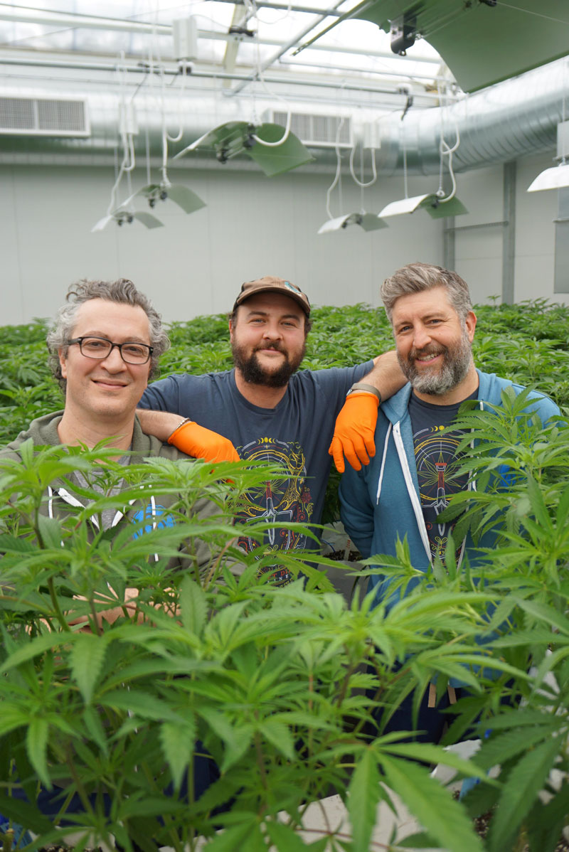 Certified Clean Cannabis in Maine