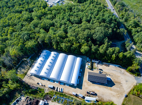 Sweet Dirt Announces Completion of Maine's Largest Cannabis Greenhouse