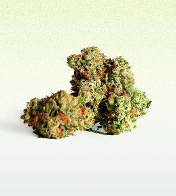 Cannabis Flower Waterville Maine